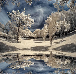Infrared - A walk to remember by CristianaApostol