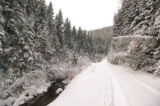 Iarna prin Apuseni