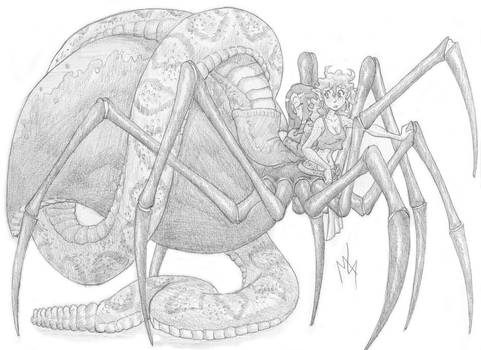 Snake and Spider