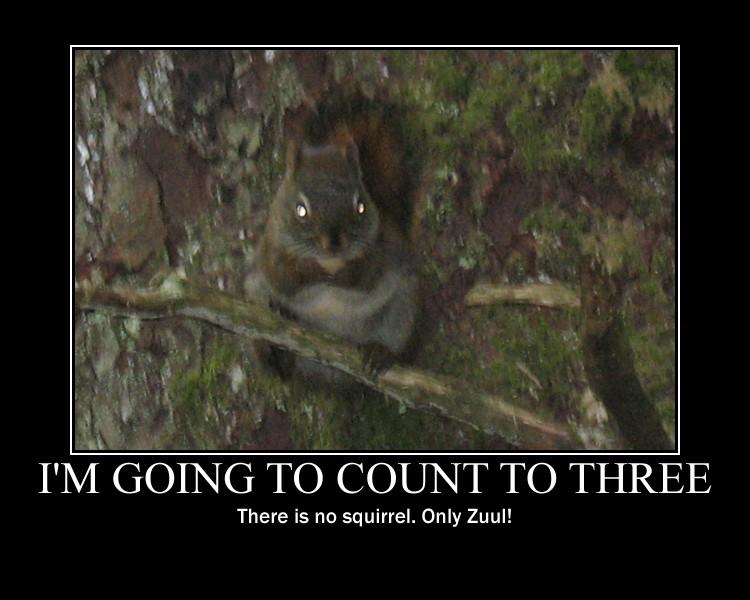 evil_squirrel_by_crescentmoondemon d3hdfiq evil squirrel by crescentmoondemon on deviantart