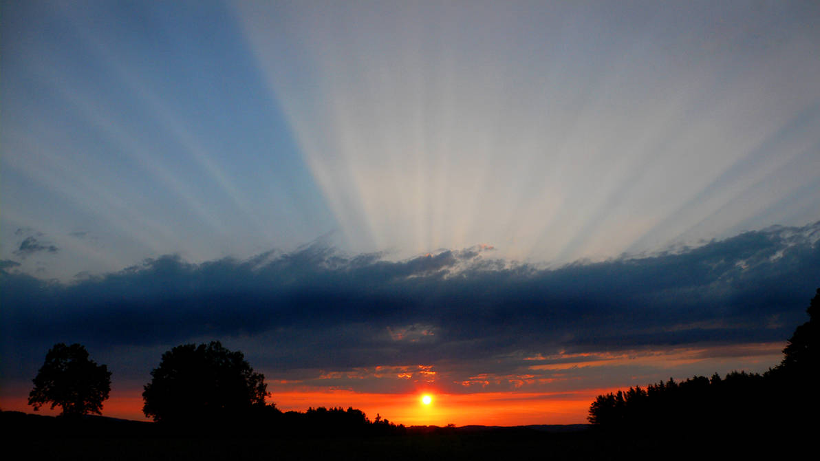 sunset by duckstance