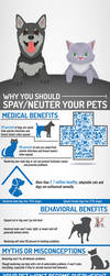 Why you should spay/neuter your pets by foundani