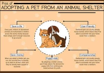 Pros of Adopting a Pet from an Animal Shelter by foundani