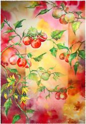 Tomato... by shve