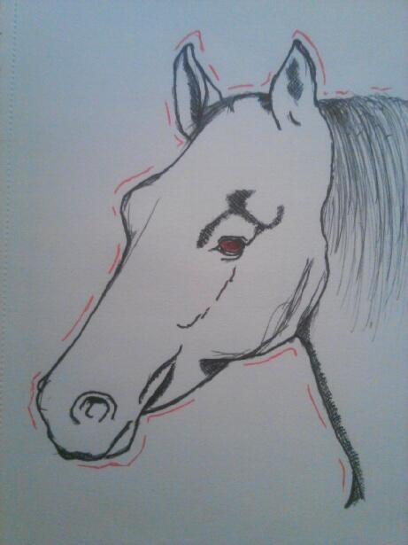 Horse by DragonbornCN