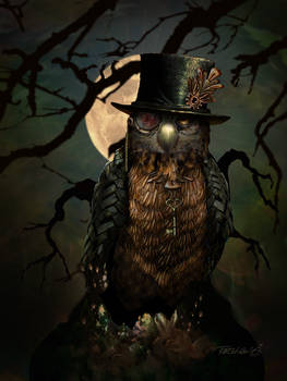 Gadget The Owl