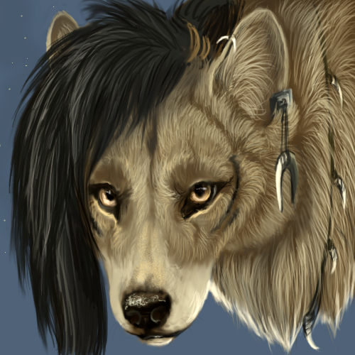 http://orig05.deviantart.net/1ee4/f/2011/159/4/d/shaman_wolf_by_flashlioness-d3iduy5.png