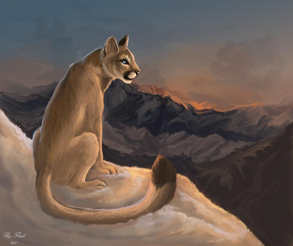My little mountain dream by FlashW
