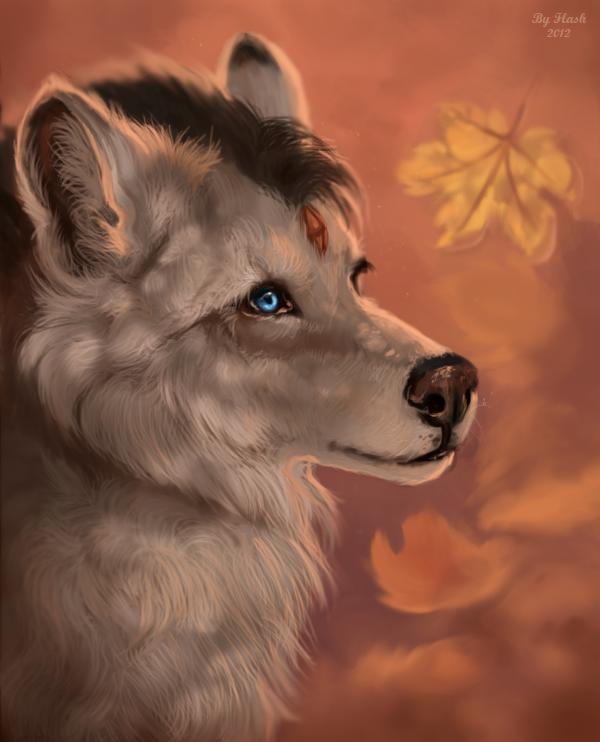 Last leaves by FlashW