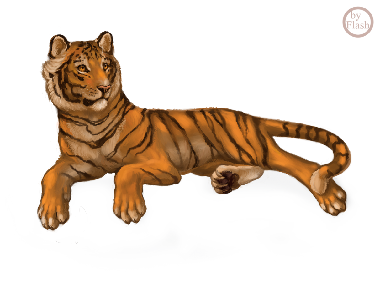 Tiger commission by FlashW