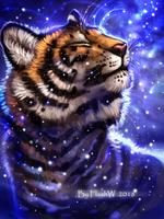 Cosmos  by FlashW