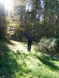 On the Way to Wonderland by leblondi