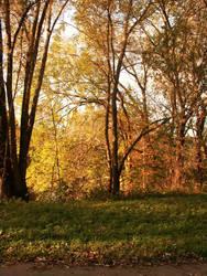 Autumn Times by leblondi