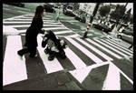 31-Crossing