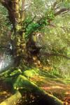 39-Venerable tree