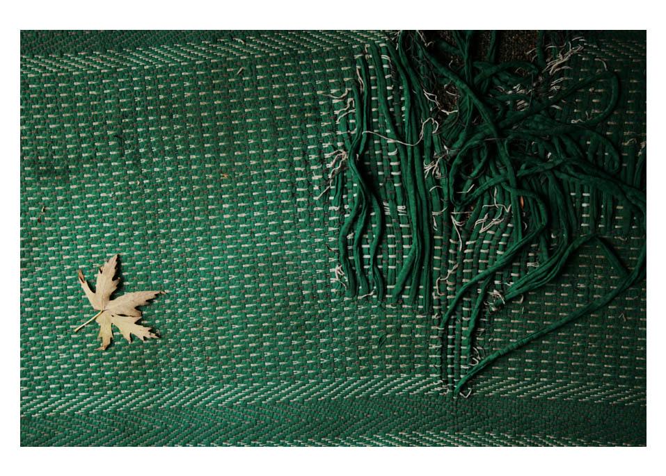 leaf rug by FigoTheCat