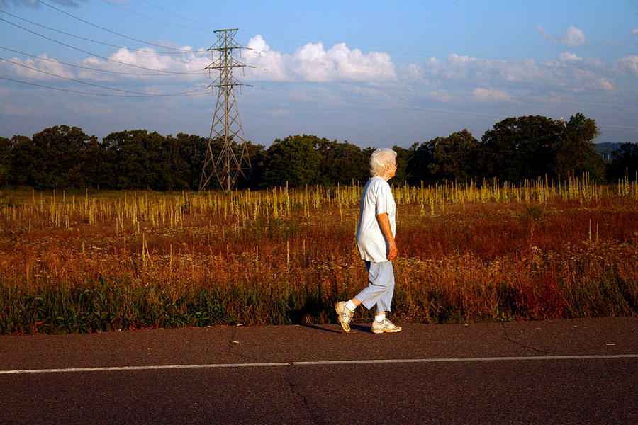 morning walk by FigoTheCat
