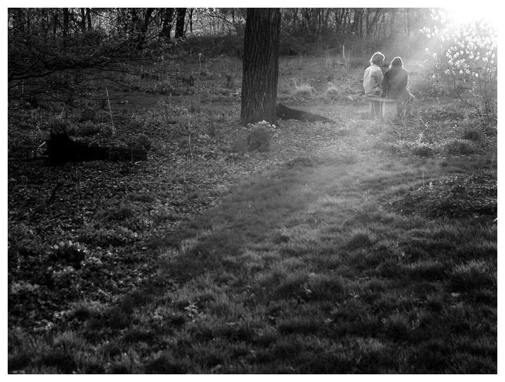 bw spring by FigoTheCat