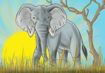 Elephant Sun by Wlfhrted