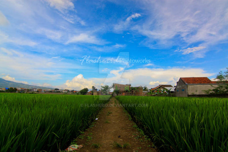 Kampungku by flasherid
