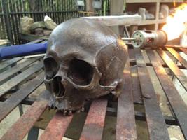 2014-03-08 Bronze skull by MrSoles