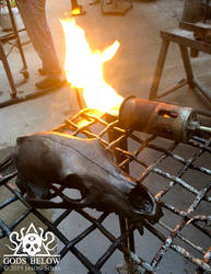 Bronze Bear Skull by MrSoles