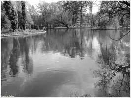 LAke in BW by Iuliaq