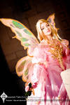 The Pink Masquerade Fairy