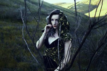 Stick Witch by Firefly-Path