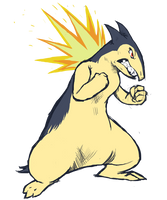 Typhlosion practice by runde