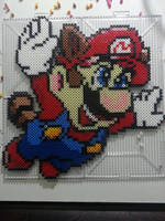 Raccoon tail Mario. by Bgoodfinger