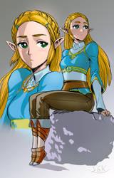 Botw Zelda by SGK1059