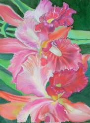 Gladly Gladiolus by hamsterdance