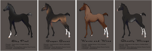 Lineage Zlesdin Yearlings | CLOSED