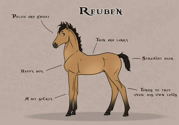 Reuben Reference by FeatherCandy