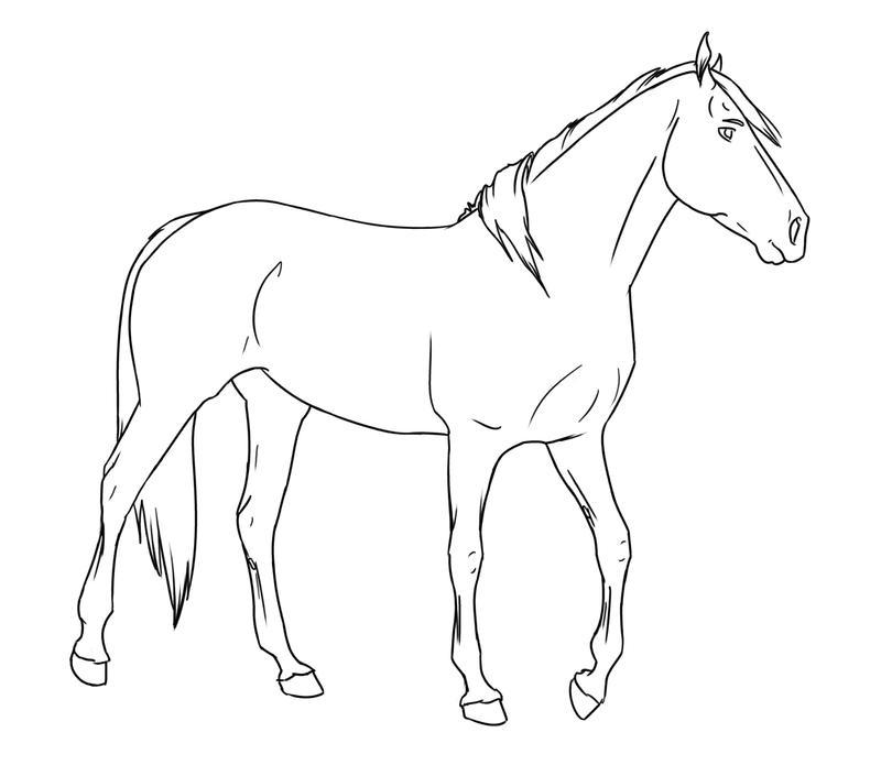 Walking Horse Outline: Walking Horse 02 By Silverglass19 On DeviantArt