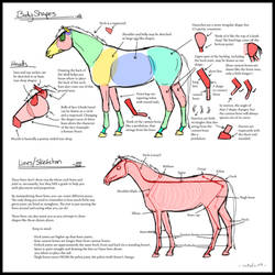 Horses as Shapes