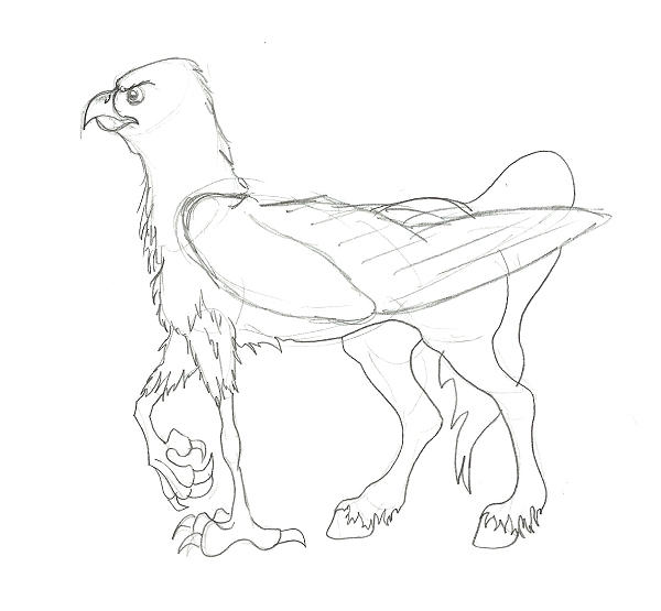 coloring pages buckbeak - photo#18