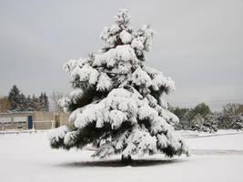 Snowy Playground 5 by ZIM402