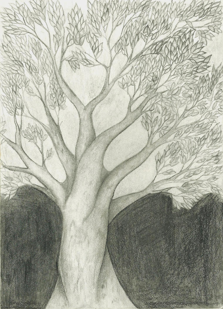 tree pencil drawing by Goldphishy