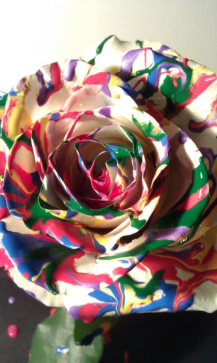 splattered rose by Goldphishy
