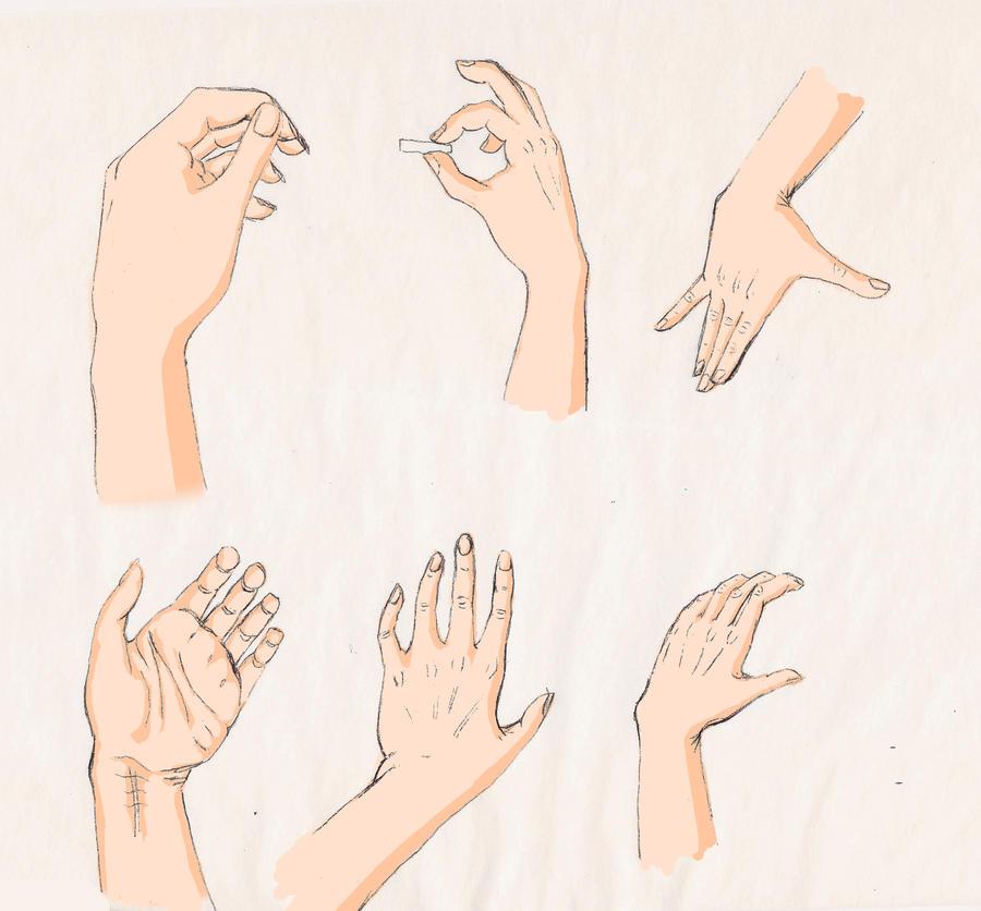 hand study by Goldphishy