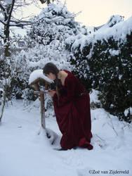 Snow Princess with birdhouse by Feia-Aila