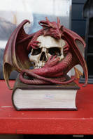 Dragon skull Book LARGER FILE STOCK by scratzilla