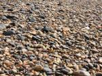 rocky beach .