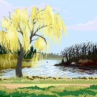 Mellow Yellow Willow
