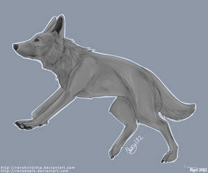 German sheperd lines -NOT FOR FREE USE-