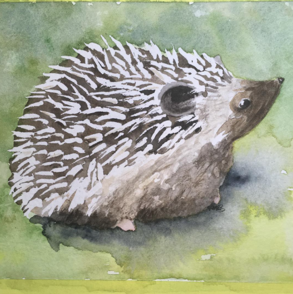Hedgehog Watercolor by paintingmyheartred