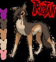 Tristan Character Sheet by Yauriko