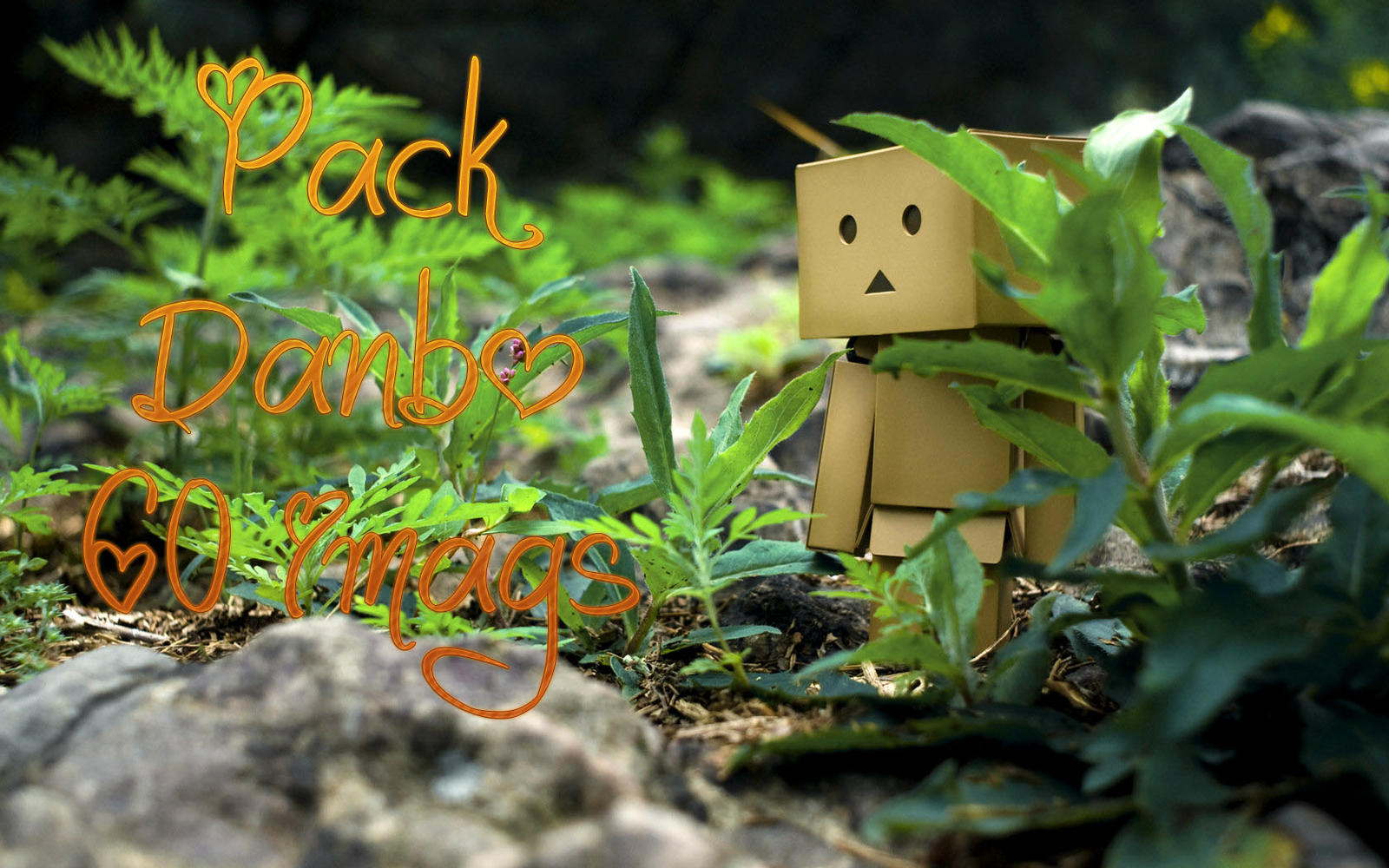 Pack De Imagenes De Danbo by BERENICEHELLO